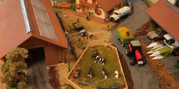 Диорамы с городской и сельской местностью